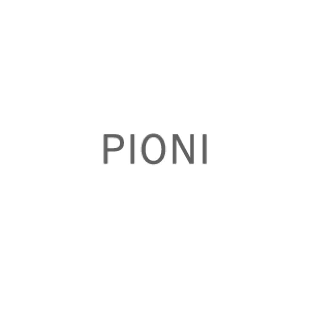 Pioni
